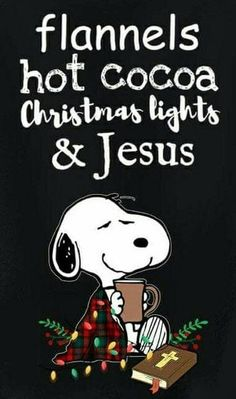 Snoopy - Flannels, hot cocoa, Christmas light and Jesus. Peanuts Christmas, Winter Christmas, All Things Christmas, Christmas Holidays, Xmas, Christmas Movies, Celebrating Christmas, Funny Christmas, Snoopy Quotes