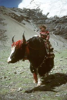 Peruvian ride
