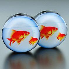 Goldfish Bowl Acrylic Plugs