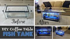DIY Coffee Table Aquarium | TheWHOot Fish Tank Table, Fish Tank Coffee Table, Diy Coffee Table, Diy Table, Diy Aquarium, Aquarium Ideas, Aquarium Design, Before And After Diy, My New Room