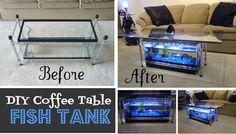 DIY Coffee Table Aquarium | TheWHOot