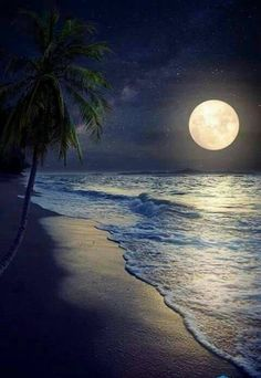 Photographic Print: Beautiful Fantasy Tropical Beach with Milky Way Star in Night Skies, Full Moon - Retro Style Artwor by jakkapan : Beautiful World, Beautiful Places, Beautiful Sky, Beautiful Moon Pictures, Good Night Beautiful, Milky Way Stars, Ciel Nocturne, Image Nature, Shoot The Moon