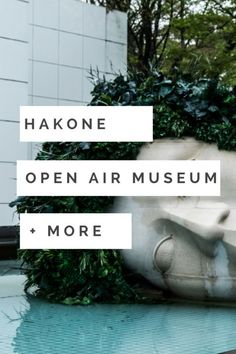 Take a day trip from the bustling city of Tokyo to the mountainous area of Hakone. Try out the local onsens or take a trip to the Hakone open are museum. In this blog I will show you how to get around Hakone on a budget.