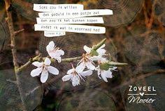 Soms zou ik willen Dat geduld in een potje zat Dan zou ik het kunnen kopen Zodat ik altijd wat in voorraad had  www.zoveelmooier.nl