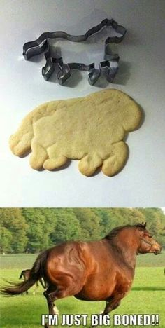 Pinterest fail OMG this is the funniest thing I have ever seen. I laughed so hard it hurt!