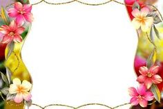 multicolor flowers frame