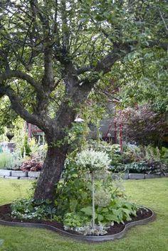 It's a house Garden Borders, Garden Paths, Landscape Design, Garden Design, Scandinavian Garden, Garden Gadgets, Patio Deck Designs, Backyard Landscaping, Garden Inspiration