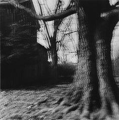 "Ralph Eugene Meatyard, Untitled (""Motion-Sound"" Landscape), 1969/1974, ClampArt"