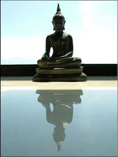 """""""First of all, Buddhism is neither pessimistic nor optimistic. If anything at all, it is realistic, for it takes a realistic view of life and the world. It looks at things objectively.  It does not falsely lull you into living in a fool's paradise, nor does it frighten and agonize you with all kinds of imaginary fears and sins. It tells you exactly and objectively what you are and what the world around you is, and shows you the way to perfect freedom, peace, tranquility and happines."""" ~.""""…"""