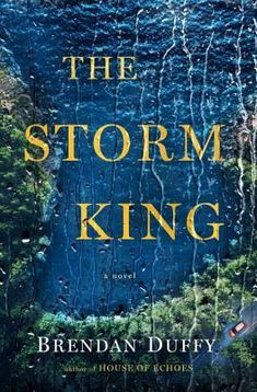 Cover Crush: The Storm King by Brendan Duffy
