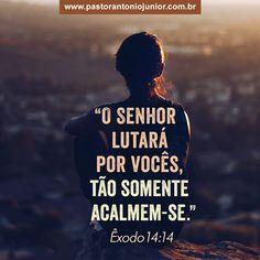 Êxodo 14:14