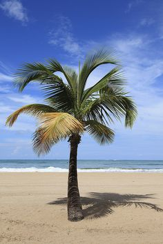 Isla Verde Beach, San Juan, Puerto Rico, Caribbean