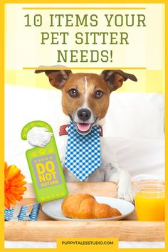 10 Items Your Pet Sitter Needs!  If you're planning a holiday, you can either book a dog hotel or ask a family member to look after your best friend. Either way, these are ten essential items your pet sitter will need during his stay! Click through to learn more, or repin and save for later!
