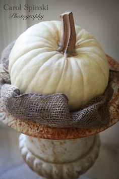 Decorating with white pumpkins...