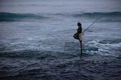 Image: A fisherman makes his daily catch using traditional stilts at a bay at dawn in Unawatuna (© TIM CHONG//Reuters)