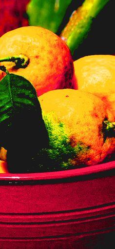 Chico Nogueira: Azedos Limões!