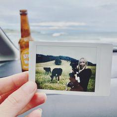Feeling grateful 🐾💕🙏🏼 Grateful, Polaroid Film, Feelings