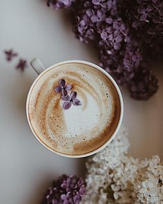 Easy Healthy Breakfast Ideas & Recipe to Start Excited Day - Koffein - Kaffee But First Coffee, I Love Coffee, Hot Coffee, Coffee Break, Coffee Today, Morning Coffee, Chocolate Caliente, Coffee Photos, Coffee Pictures