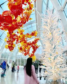 Experiencing the true luxury of glass art with #dalechihuly 💕 #localrealtors - posted by Jessica Li, Toronto Realtor https://www.instagram.com/jhome.ca - See more Real Estate photos from Local Realtors at https://LocalRealtors.com