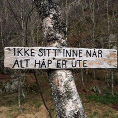 Do not sit inside when all hope is gone Proverbs Quotes, Writing Art, Crazy Quotes, Science And Nature, True Words, Cool Words, Life Lessons, Norway, Motivation