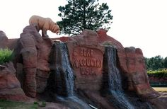 Bear Country - Near Rapid City, SD