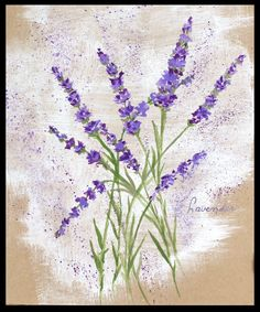 How to paint Lavender flowers with any kind of watercolor on normal pape. How to paint Lavender fl Lavendar Painting, Lavender Paint, Acrylic Painting Flowers, Lavender Flowers, Diy Painting, Watercolor Flowers, Watercolor Paintings, Easy Watercolor, Easy Flower Painting