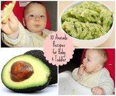 Nearly 20 essential vitamins and nutrients such as fiber, potassium, Vitamin E, B-vitamins and folic acid. Easy to make baby food recipes. Avocado Baby Food, Avocado Recipes, Toddler Meals, Kids Meals, Toddler Food, Vitamin E, Disney With A Toddler, Solids For Baby, Baby Weaning