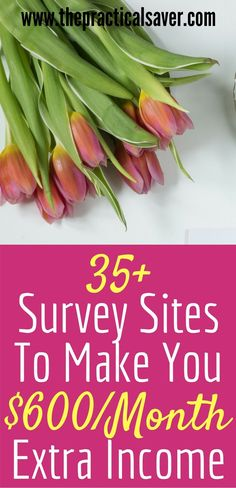 Looking for other sources of income? How about survey income? This post describes survey sites that help you earn extra money. My family has been able to make more money out because of surveys. Do you have spare time to spare? Then, taking surveys is for