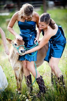 My wedding will have a petting zoo. No doubt.