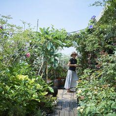 ベランダで家庭菜園!食事もできるテラスつき、居心地のいいベランダ作りのコツ - 北欧、暮らしの道具店 My Ideal Home, Forest Garden, Terrace Garden, Green Life, Green Grass, Rooftop, New Homes, Cactus, Vacation