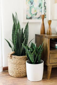 Large - Mid Century Modern Planter with Wood Plant Stand, Modern Plant Pot, Planter Stand - Ceramic Pot - Groen in huis - Decoration Modern Planters, Wood Planters, Garden Planters, Home Decor Accessories, Decorative Accessories, Potted Plants, Indoor Plants, Air Plants, Foliage Plants