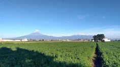 Mi mañana #landscape #mexico_greatshots #mexico_maravilloso #pasionxmexico #ig_mexico #loves_mexico #puebla #pueblosdeMexico http://ift.tt/2vr3lNF