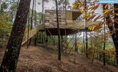 Glamping Tree Houses Spain