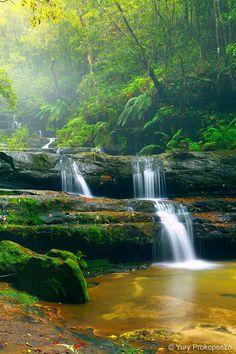 Terrace Falls, Blue Mountains NSW Australia. Yury Prokopeno