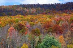 Panoramio - Autumn ; The season of color the world over
