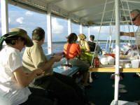 CAPT. DICK'S BEAUFORT RIVER TOUR AND DOLPHIN WATCH