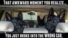 Wrong Car, Dude #lol