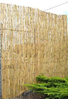 installing a bamboo friendly fence on a chain link fence gardening pinterest chain link fencing and chains