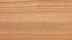 Europäische Lärche Holzstruktur