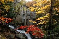 Gatineau Park in Quebec, Canada, is a Protected Area in this Country - Image from Google