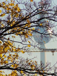 ღღ Herbst in Berlin der Fernsehturm  Fall in Berlin - TV Tower, Alexanderplatz