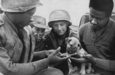 U.S. Artillerymen share their rations with their mascot puppy Chip at Ben Het.