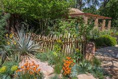 Sentebale - Hope in Vulnerability garden at Chelsea highlights the plight of Lesotho's most vulnerable children