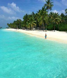 The Maldives Islands |Gill Lankanfushi  Photo : @luxefamilytravel @gili.lankanfushi
