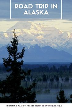 Get off the cruise ships and hit the road with #Thrifty Cars. A #roadtrip in Alaska offers the opportunity to get off the beaten path and find animals, remote villages and great hiking.