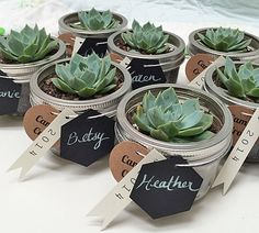 Mini Succulent Place Settings: Party Favor DIY by krystina-lollipops