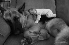 Baby sleeping on top of his dog on the couch - b & w photo (hva)