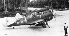 Curtiss P 40N Kittyhawk RNZAF 18Sqn White 61 Solomon Islands 1944 01