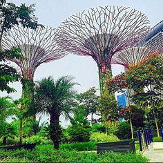 Superpuita! Kiitos tägäyksestä @marshmuu #mondolöytö #singapore #mondolehti Oletko käynyt Singaporessa? Mitä pidit? Mikä oli parasta?