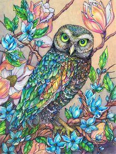 'Rainbow Owl with Blue Flowers' by Sarah E McIntyre